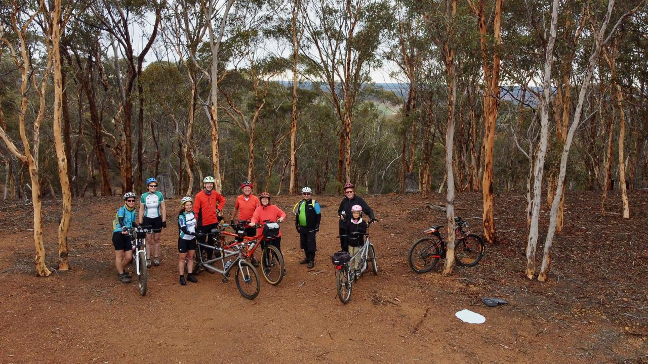 Nine cyclists with four tandems are standing between young white-barked wandoo trees with a view of the woodlands and farmlands in the background.