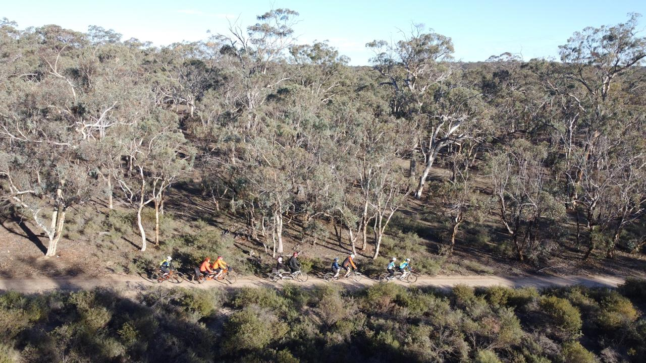 The photo shot from a drone shows four tandems and a single bike riding head to tail from left to right along a firm surfaced fire trail, backed by tall Eucalypt woodland and clear blue sky.